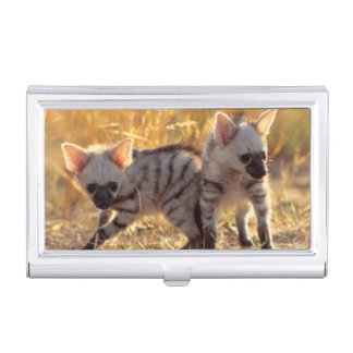 Ein Paar Aardwolfjunge am Spiel Visitenkarten Dose