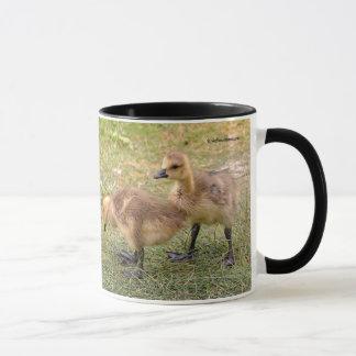 Ein Paar spielerische Kanada-Gans-Gänschen Tasse
