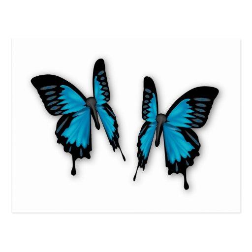 Ein Paar tropische blaue Schmetterlinge Postkarten