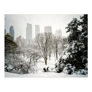 Ein Pedicab im Central Park während des Winters Postkarte