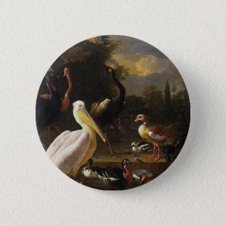 Ein Pelikan und andere Vögel nahe einem Pool Runder Button 5,7 Cm
