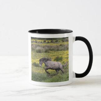 Ein Pferd, das in ein Feld der gelben Wildblumen Tasse