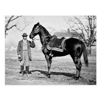 Ein Pferd genannt Cincinnati, 1865 Postkarte