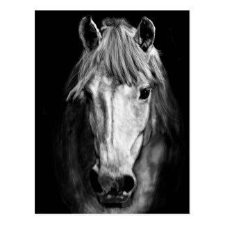 Ein Pferd rief Elvis an Postkarte