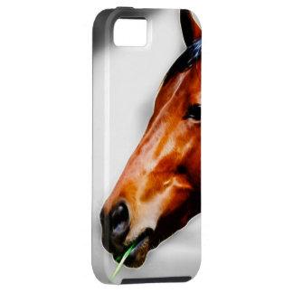 Ein Pferd und ein Grashalm Hülle Fürs iPhone 5
