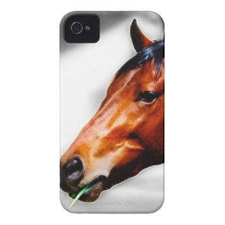Ein Pferd und ein Grashalm iPhone 4 Case-Mate Hülle