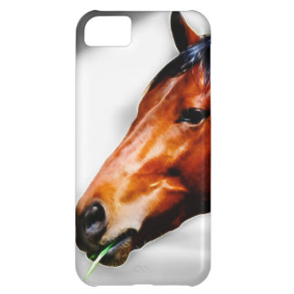 Ein Pferd und ein Grashalm iPhone 5C Hülle