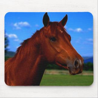 Ein Pferdestehendes stolzes Mauspad