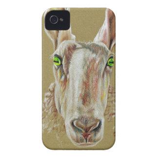 Ein Porträt eines Schafs iPhone 4 Hülle