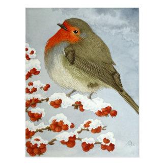 Ein Robin und Beeren im Schnee Postkarte
