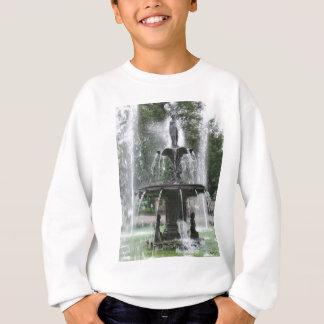 Ein schöner Brunnen im Alameda Mexiko DF 1 Sweatshirt