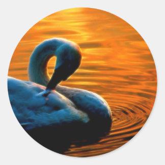 Ein Schwan, der ein letztes Schwimmen am Sonnenunt Runde Sticker