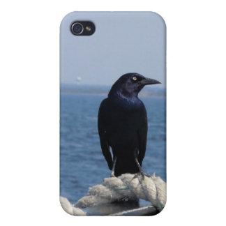 Ein schwarzer Vogel auf der Fähre iPhone 4/4S Case