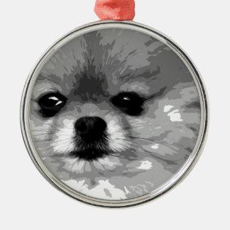Ein Schwarzweiss-Spitz Silbernes Ornament