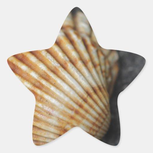ein Seeoberteil Sternaufkleber
