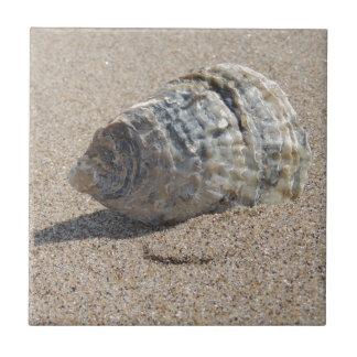 Ein Seeoberteil Keramikkacheln