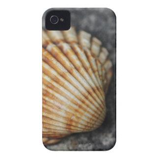 ein Seeoberteil iPhone 4 Case-Mate Hülle