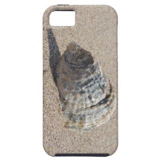 Ein Seeoberteil Hülle Fürs iPhone 5