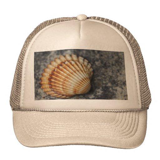 ein Seeoberteil Baseball Caps
