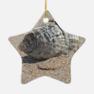 Ein Seeoberteil Keramik Stern-Ornament