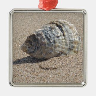 Ein Seeoberteil Quadratisches Silberfarbenes Ornament