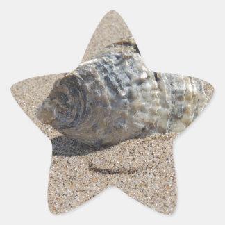 Ein Seeoberteil Stern Aufkleber
