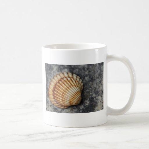 ein Seeoberteil Tee Haferl
