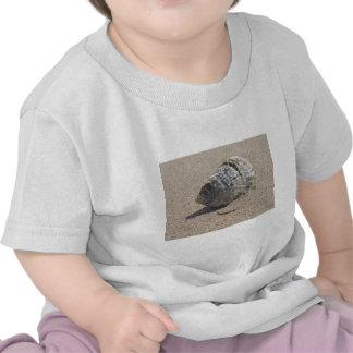 Ein Seeoberteil Tshirt