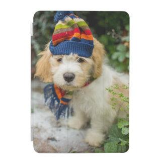 Ein süßer Cavachon Welpe in einem Winter-Hut und iPad Mini Hülle