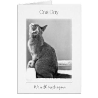 """""""Ein Tag treffen wir wieder"""" Katzen-Beileid Karte"""