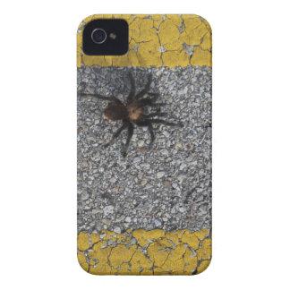 Ein Tarantula, der die Straße kreuzt iPhone 4 Hülle