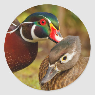 Ein untrennbares Paar hölzerne Enten Runder Aufkleber