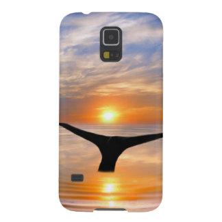 Ein Wal-Schwanz am Sonnenuntergang Samsung Galaxy S5 Cover