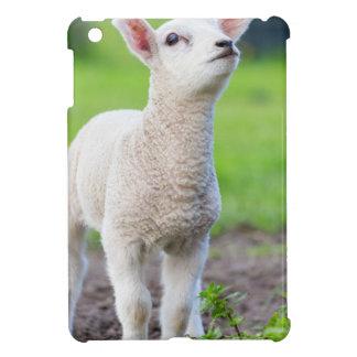 Ein weißes neugeborenes Lamm stehend im grünen iPad Mini Hülle