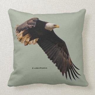 Ein Weißkopfseeadler nimmt zum Himmel Kissen