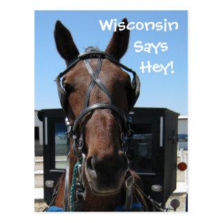 Ein Wisconsin he! Postkarte