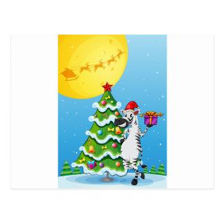 Ein Zebra neben dem hohen Weihnachtsbaum Postkarte