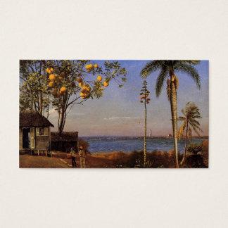 Eine Ansicht in die Bahamas durch Bierstadt Albert Visitenkarte