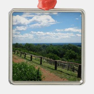 Eine Ansicht von Monticello Quadratisches Silberfarbenes Ornament