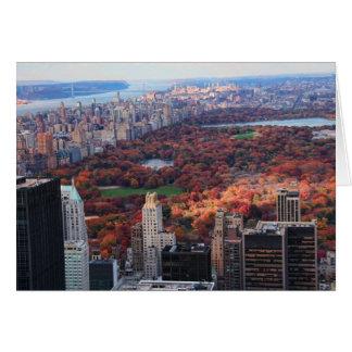 Eine Ansicht von oben: Herbst in Central Park 01 Karte