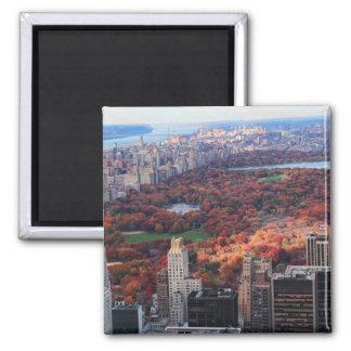 Eine Ansicht von oben: Herbst in Central Park 01 Quadratischer Magnet