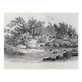 Eine Biegung im Fluss 'von der Geschichte von Postkarte
