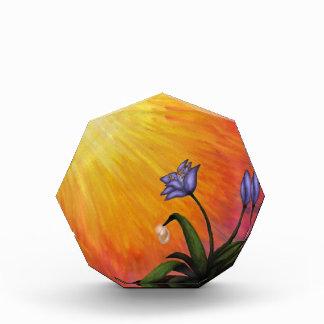 eine Blume mit einem waterdrop in glänzendem Licht Auszeichnung