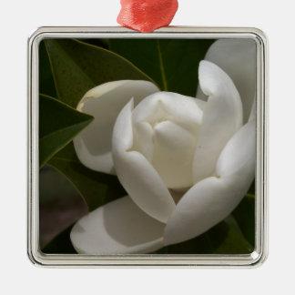 eine cremefarbene Magnolien-Blumenknospe Silbernes Ornament