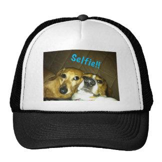 Eine Dackel und ein Beagle, die ein selfie nehmen Tuckercaps