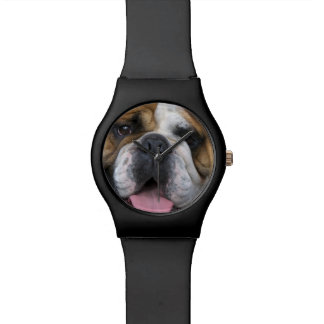 Eine englische Bulldogge in Belgien Armbanduhr