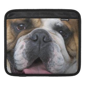 Eine englische Bulldogge in Belgien Sleeve Für iPads