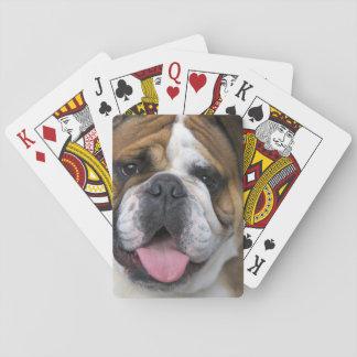 Eine englische Bulldogge in Belgien Spielkarten