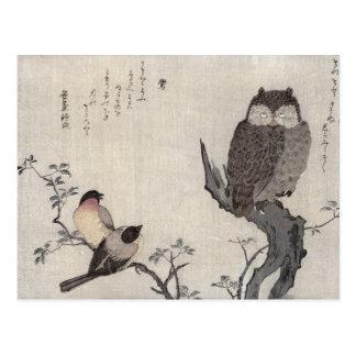 Eine Eule und zwei OstBullfinches Postkarte