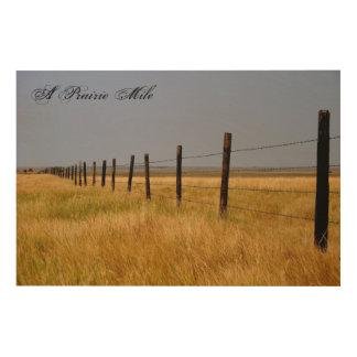 Eine Grasland-Meilen-hölzerne Platten-Wand-Kunst Holzwanddeko